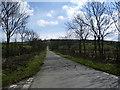 NY2541 : Road to Angerton Bank by Alexander P Kapp