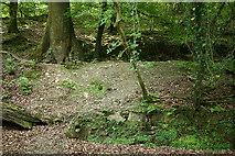 SX4970 : Buckland Monachorum: old leat by Martin Bodman