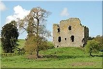 NO3221 : Creich Castle by Jim Bain