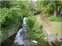 TQ1649 : Pipp Brook in Dorking by Nigel Cox