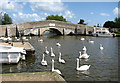 TG4118 : Medieval bridge over the River Thurne by Evelyn Simak