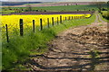 NT9738 : Path & Farmland near Barmoor Ridge by John Whelan