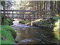 SN8586 : River Severn, Wooden Footbridge Rhyd-y-Benwch by kevin skidmore