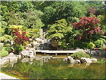 TQ2479 : Kyoto Garden in Holland Park by David Hawgood