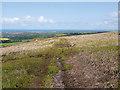 NZ8605 : Footpath across moorland at Fair Plain by Stephen McCulloch