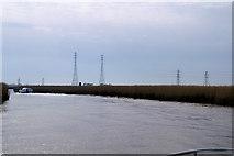 TM4599 : River Waveney below St Olaves by Pierre Terre