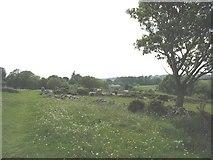SH5968 : Public footpath above Cororion Farm by Eric Jones