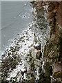 TA1774 : Weather Castle, Buckton Cliffs by Paul Glazzard