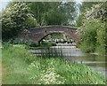 SP5897 : Vice's Bridge and Bush Lock by Mat Fascione