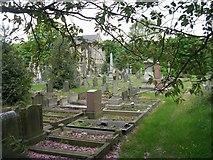 SE1017 : Salendine Nook Baptist Church Graveyard - Laund Road by Betty Longbottom