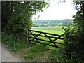 SX3876 : Pasture on the flood plain of the River Tamar by Rod Allday