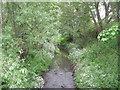 SJ6714 : Crow Brook by Row17