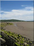 SD4673 : Looking along the foreshore by Alison Rawson