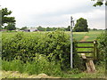 SO8035 : Looking toward Birtsmorton Court by Peter Whatley