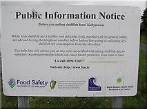 G6331 : Public Information notice, Kellystown by Kenneth  Allen