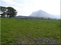 G6546 : Mullaghnaneane Townland by Kenneth  Allen