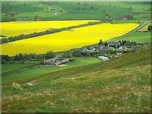 NT9529 : The Northumbrian village of Akeld by John Watson