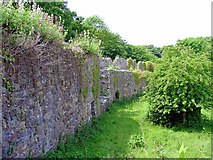 SM7525 : Medieval West Wall of the Cathedral Close by Dylan Moore