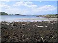 NR7388 : Carsaig Bay and Jura by E Gammie