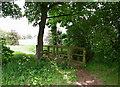 SE9031 : Ferry Beck, Everthorpe by Paul Glazzard