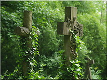 TQ2887 : Highgate cemetery (east) by andy dolman