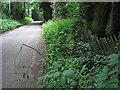 TG0728 : Reepham Road past Thurning Hall by Evelyn Simak