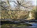 SN9384 : River Severn,Cancoed footbridge. by kevin skidmore
