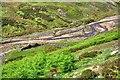 NY9800 : Ruined Wall, Mill Gill by Mick Garratt
