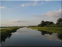 TL4279 : Looking down the Hundred Foot Drain to the sea by Alison Rawson