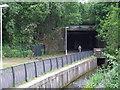 NS3075 : Ladyburn railway bridges by Thomas Nugent