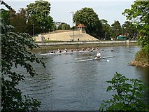 TL0549 : Rowers on the River Great Ouse by Robin Drayton