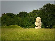 SU1070 : Avebury by Chris Gunns