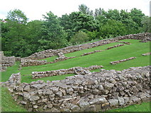 NY6366 : Milecastle 48 (Poltross Burn) (2) by Mike Quinn