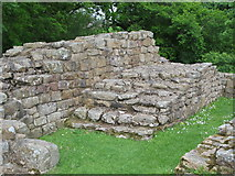 NY6366 : Remains of a flight of stairs, Milecastle 48 by Mike Quinn