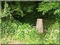 SK5076 : Roadside Triangulation Pillar near Clowne by Jonathan Clitheroe