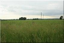 SK8177 : Farmland, Church Laneham (3) by Katy Walters