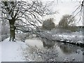 TF0745 : River Slea, upstream of Cogglesford Mill by Mick Lobb