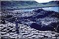 C9444 : Giants' Causeway 1968 by Duncan David McColl