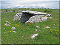 M2501 : Ballymihil Wedge Tomb in the Burren by C Michael Hogan