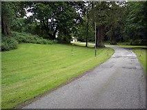 NX7763 : Urr Valley Hotel Driveway by Colin Kinnear