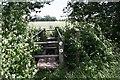 SO8740 : Rotten bridge by Bob Embleton