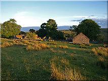 NS3262 : Heathfield farm by wfmillar