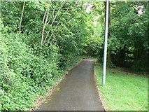 SU6553 : Path between Wade Road & Badger's Bank by Sandy B