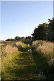 SP4788 : Foss Way to High Cross by Beryl Allcoat