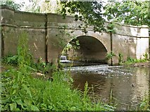 SJ5509 : Estate bridge over the Tern by Mike White