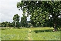 TQ2251 : Footpath to Rectory Lane by Hugh Craddock
