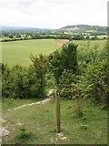 TQ2352 : Betchworth Hills from Mount Hill by Hugh Craddock