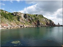 SX9364 : Cliffs above Redgate Beach by Derek Harper