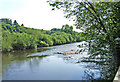 SO7876 : River Severn by P L Chadwick