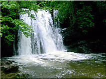 SD9163 : Janet's Foss, near Malham by Slbs